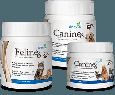 caninefeline-sec-1-img