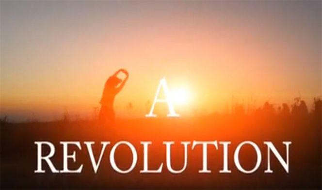 Anovite-Revolution